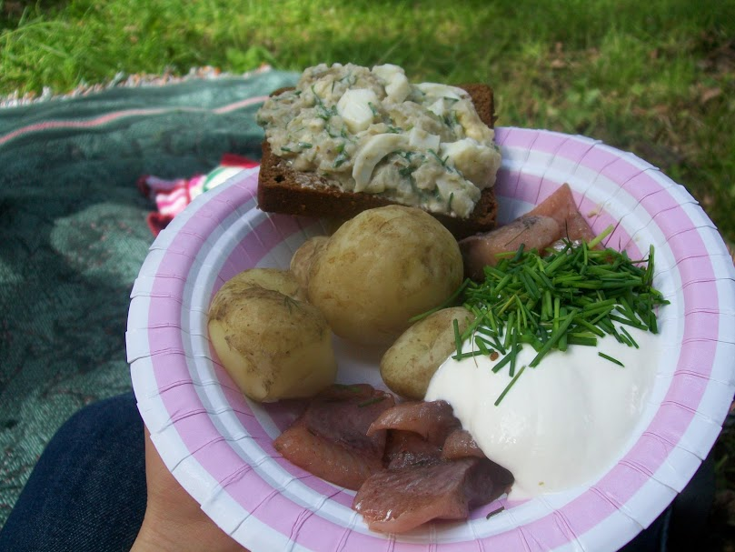 Swedish holiday, visit Sweden, Swedish food